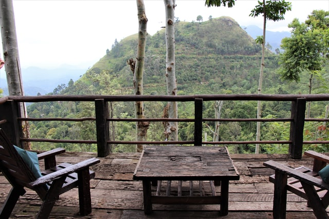 overlooking the tea plantations